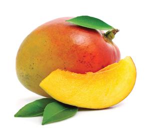 mango_0